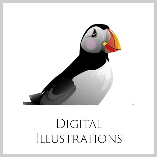 Digitala Illustrationer ENG.jpg