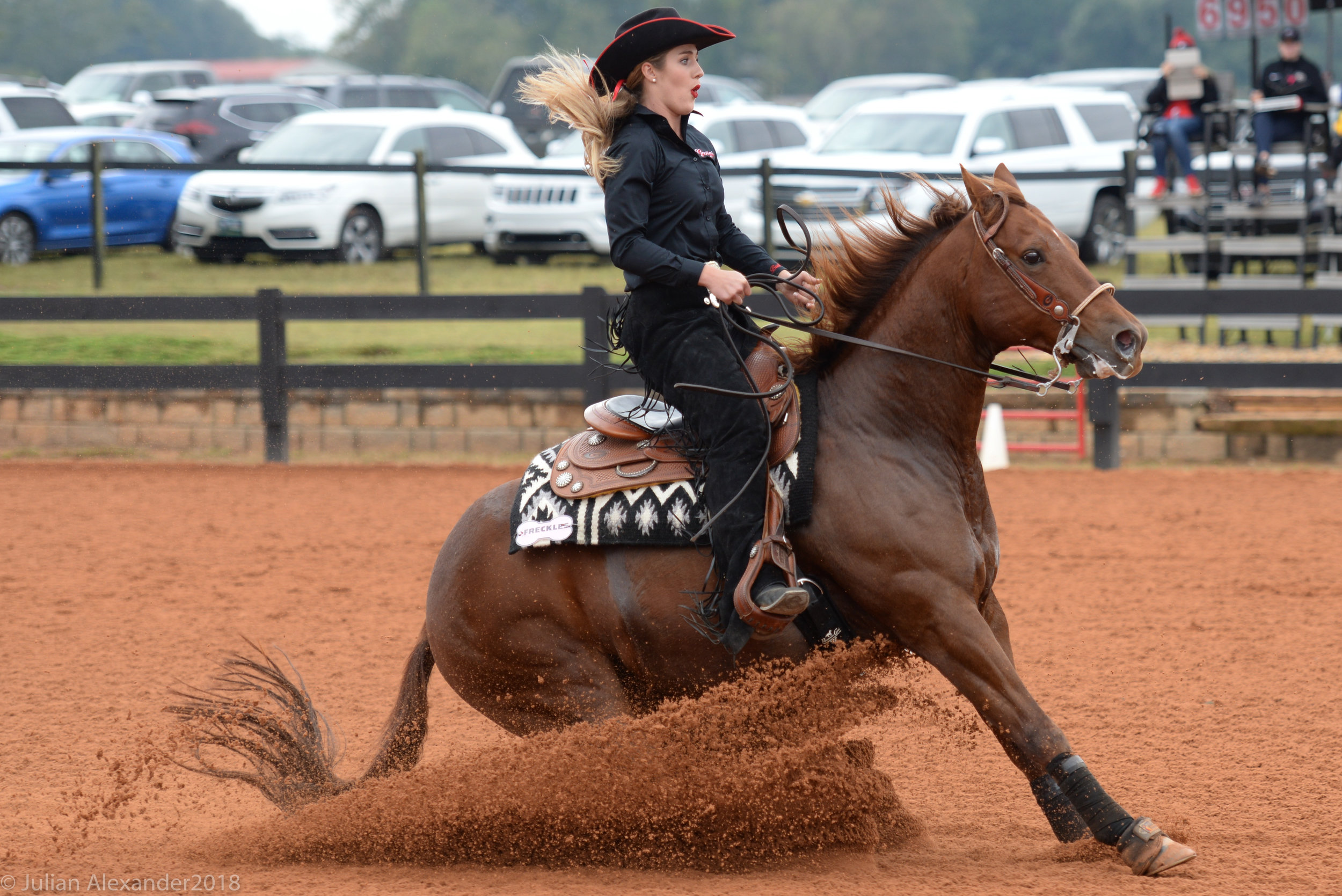 Annabeth Payne, junior from Tallahassee, Florida, competes on horse Freckles during the reining event during a meet against Oklahoma State University on Oct. 20, 2018 at the University of Georgia Equestrian Complex in Bishop, Georgia. UGA won the reining event 3-2. (Photo/Julian Alexander)