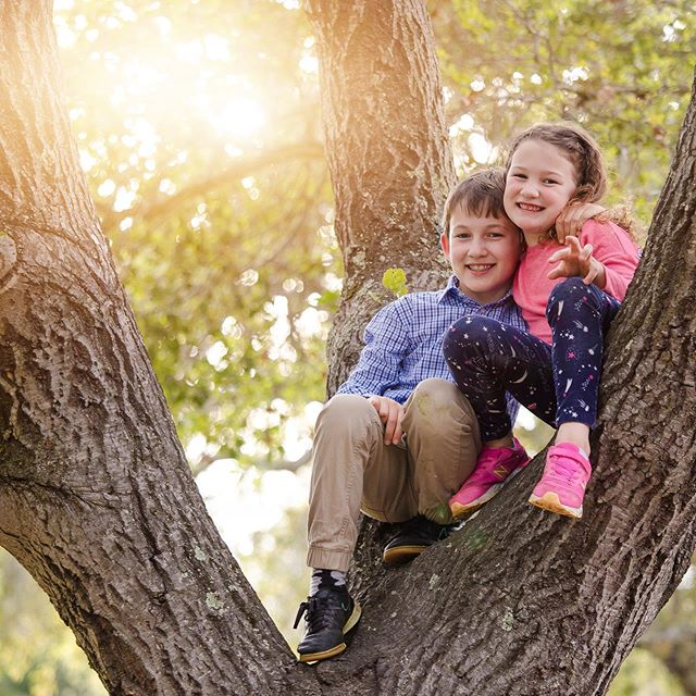 kids always find the best spots for photos 🤗 #losaltosphotographer #menloparkphotographer #paloaltophotographer #siblings #outdoorphotosession #sarahslaytonphotography #sharonpark #springphotos #summerphotos