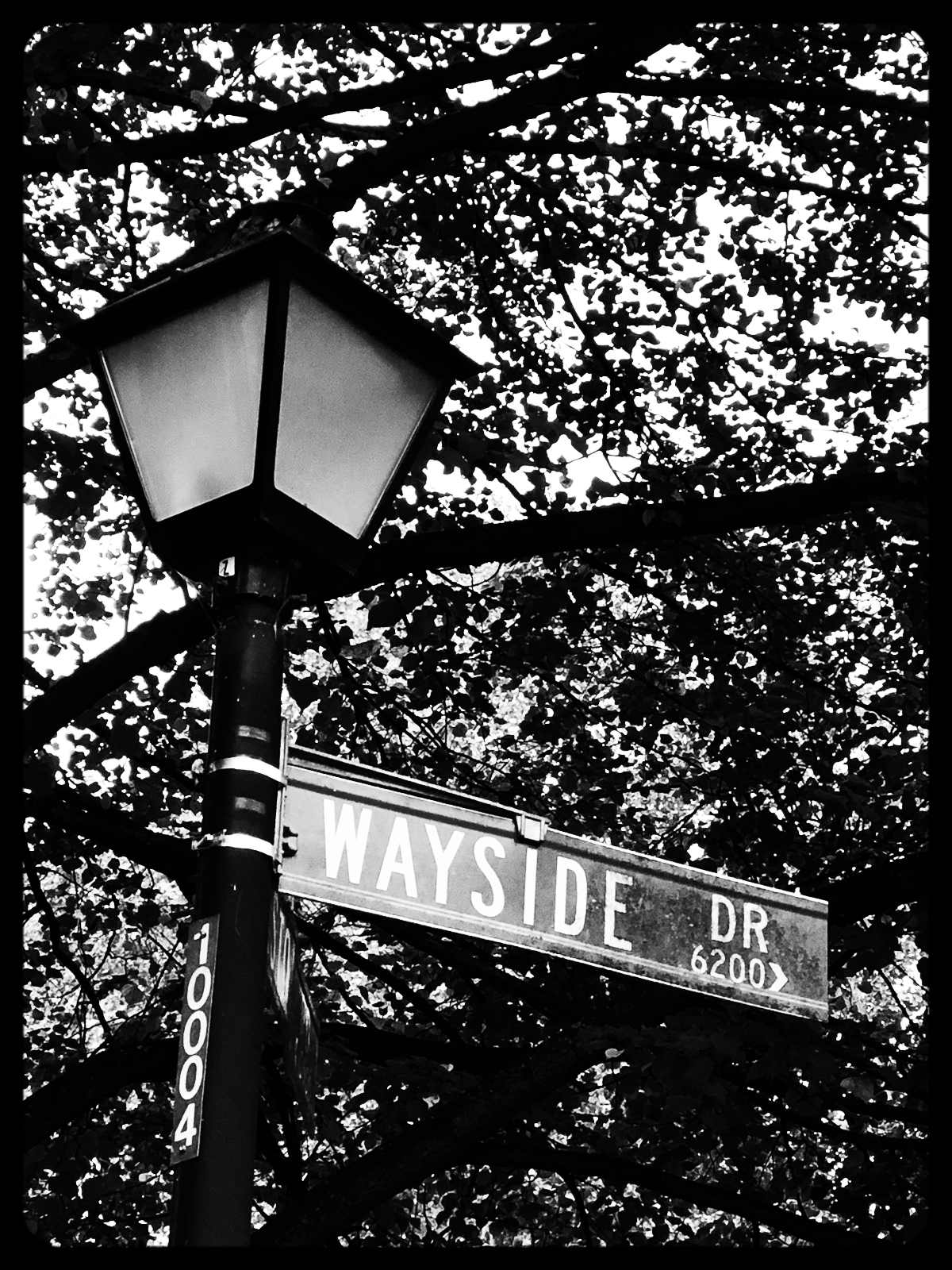 Wayside Legal Welcome