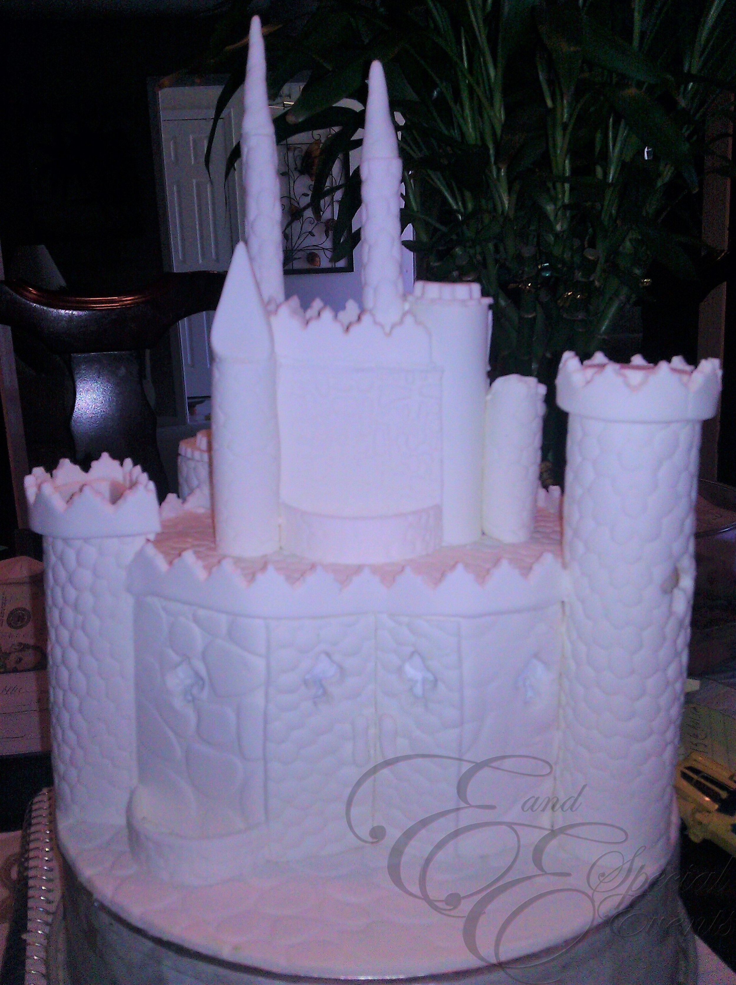 E_E_Special_Events_Specialty_Cakes_Birthday_Cakes_Virginia_Beach_Hampton_Roads19.jpg