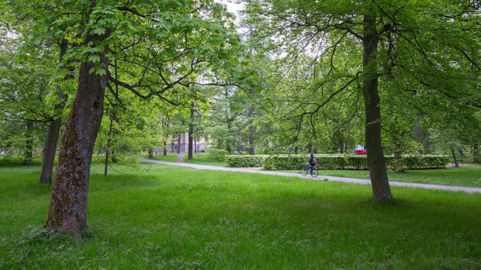 The Carolina Park. Photo: Uppsala Municipality.