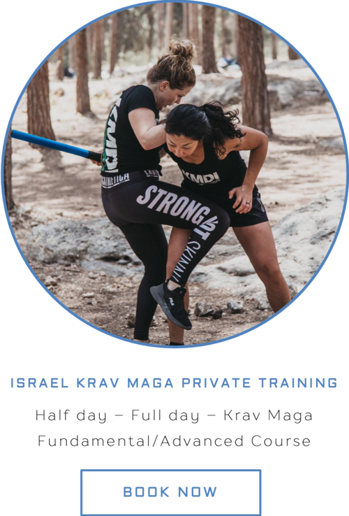 Train Krav Maga In Israel Camps Private Lessons Certification Courses