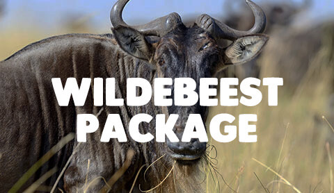 7 Day Tanzania Adventure - All Inclusive Packages Starting as low as $2150 per person