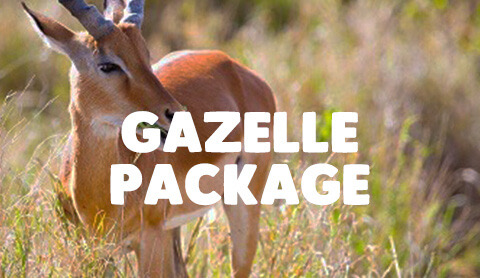 7 Day tanzania adventure - 7 Day All Inclusive Packages starting as low as $2754 per person