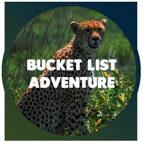 bucket-list-adventure.png