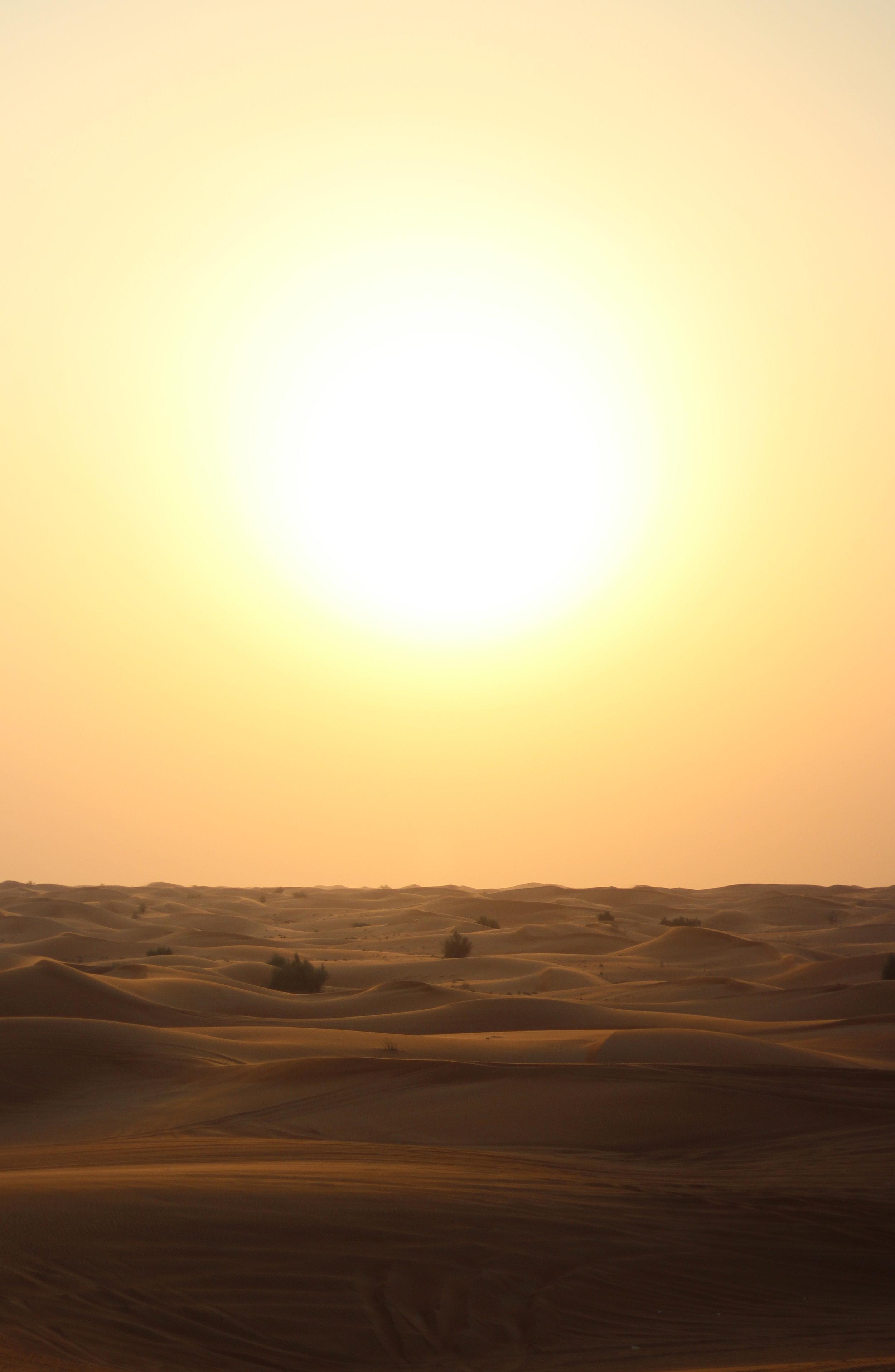 Sunny Desert