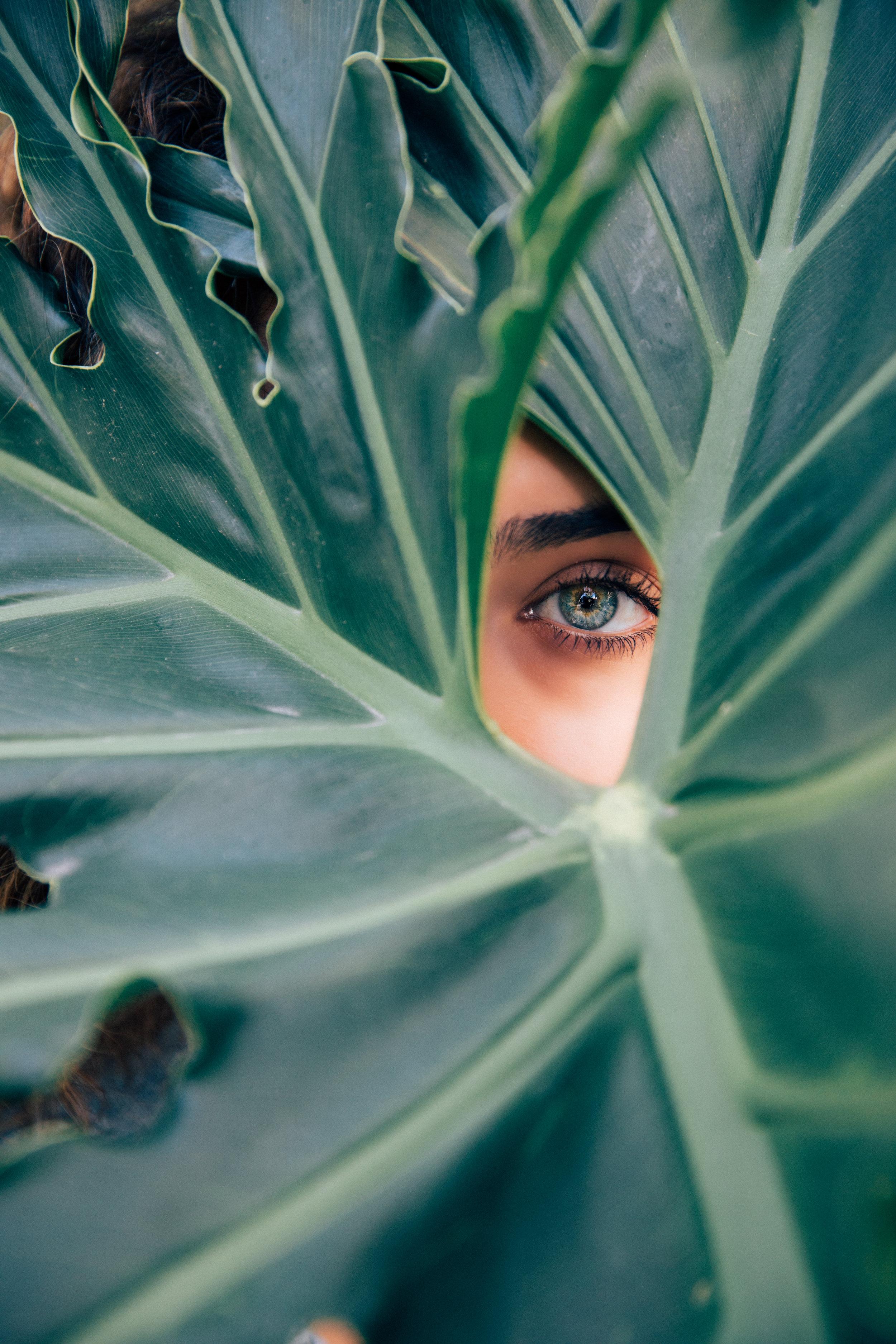woman in jungle
