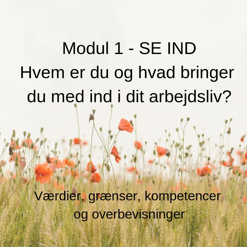 1. modul - SE IND Hvem er du og hvad bringer du med ind i dit arbejdsliv_.png
