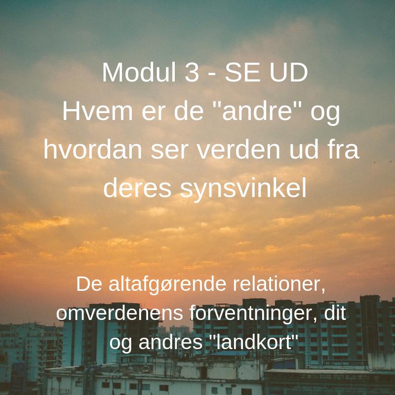1. modul - SE IND Hvem er du og hvad bringer du med ind i dit arbejdsliv_, kopi 2.png