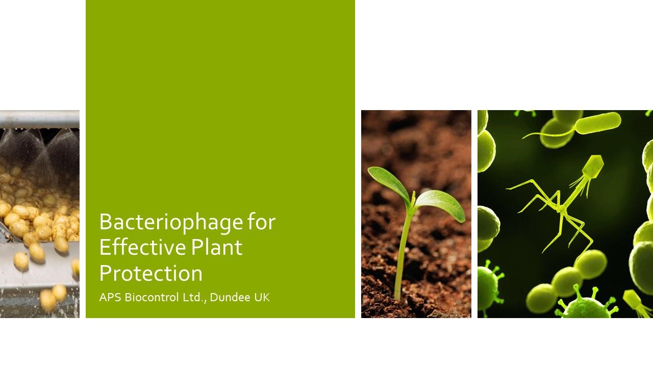 APS Biocontrol Presentation.jpg