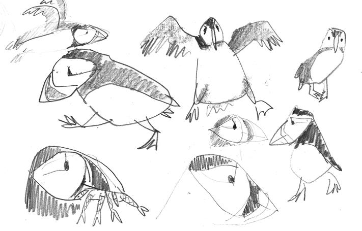 puffin_sketch.jpg