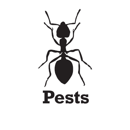 Pests Logo without white backround.png