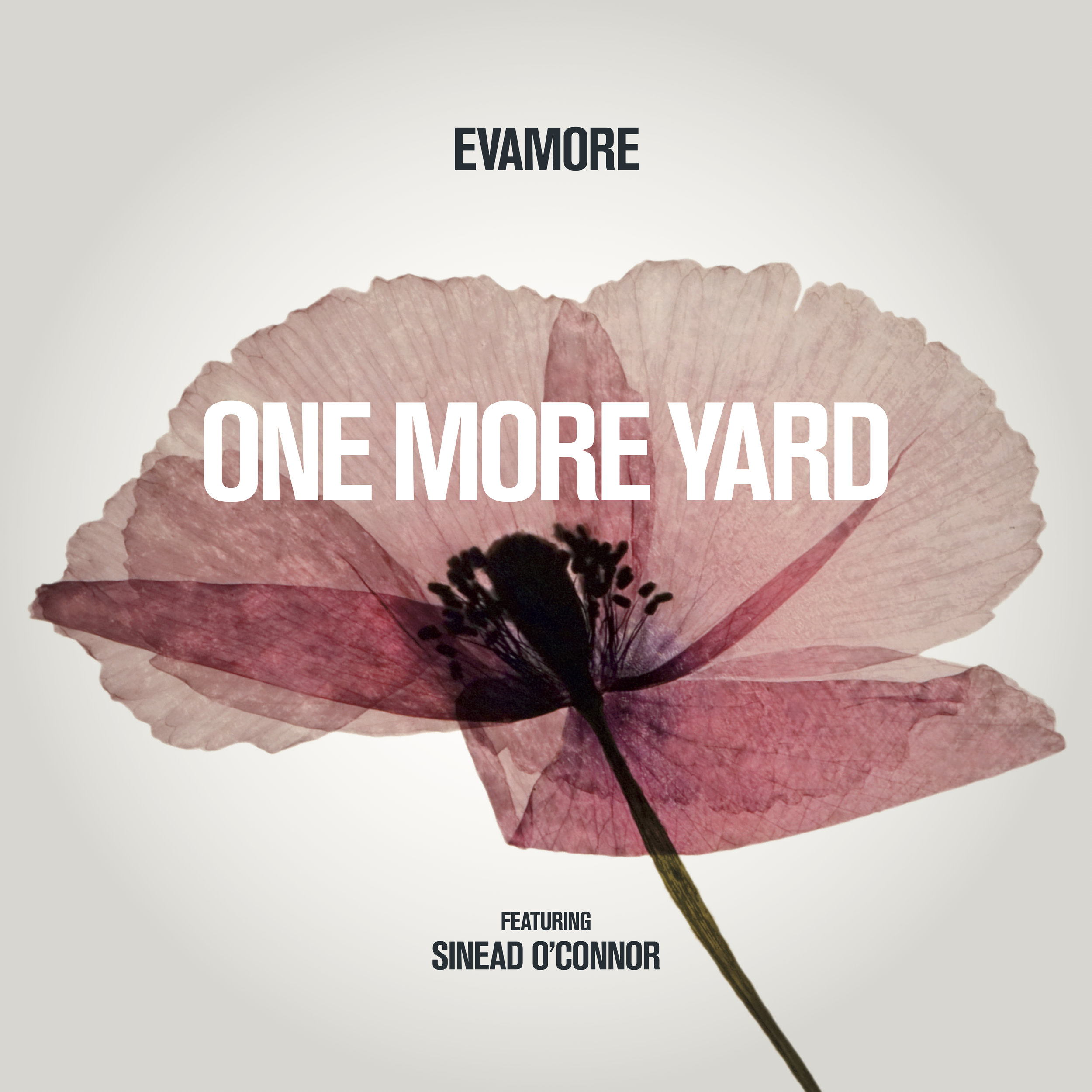 Evamore One Last Yard 7.1.jpg