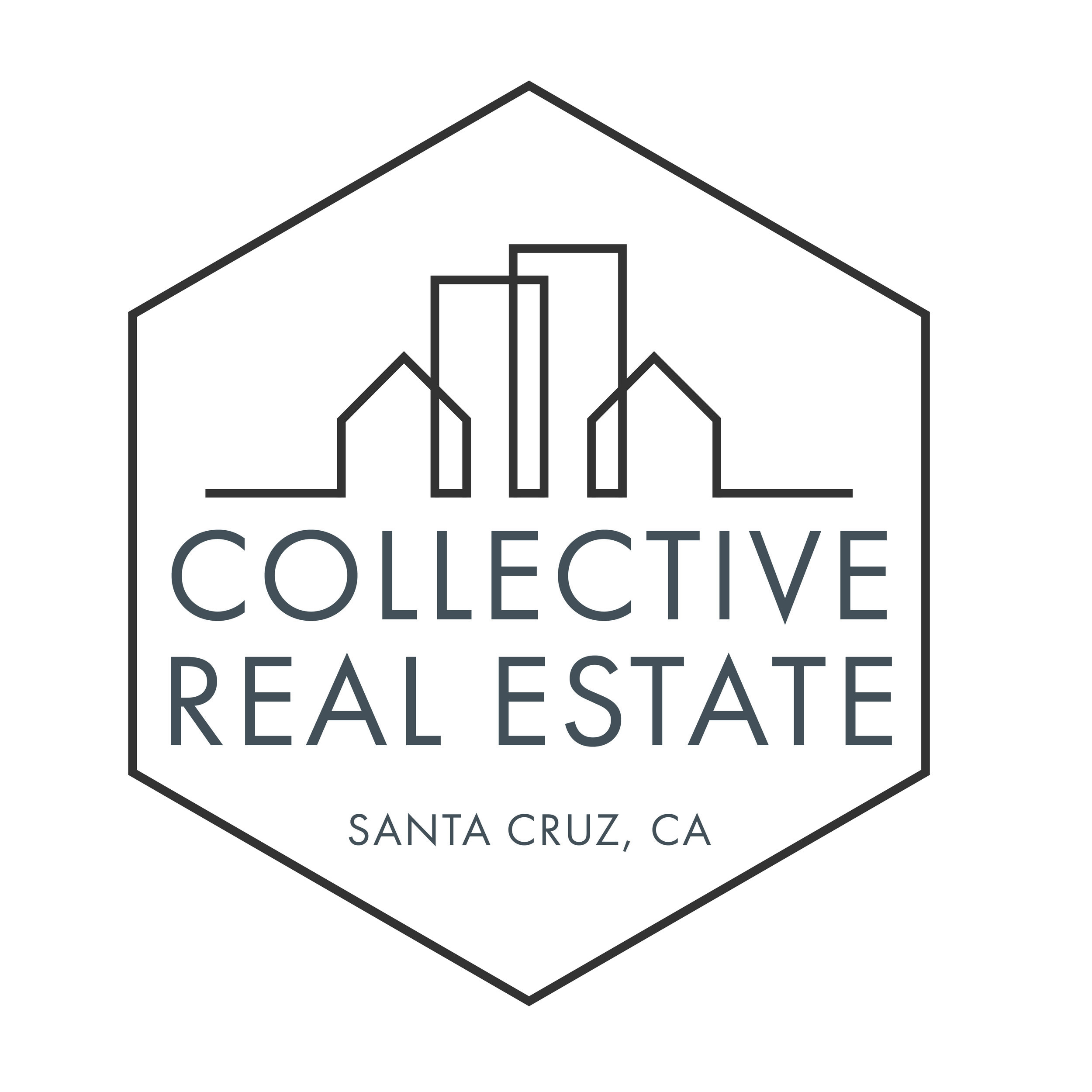 Collective Real Estate Hexagon Logo _ Santa Cruz CA.jpg