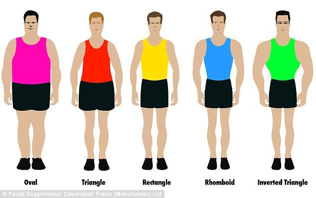shape of men.jpg