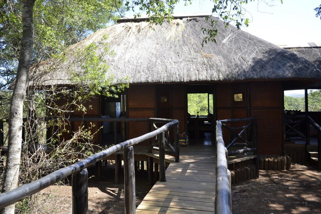 Réserve d'Hluhluwe-Umfolozi. Ma couleur a ses merveilles