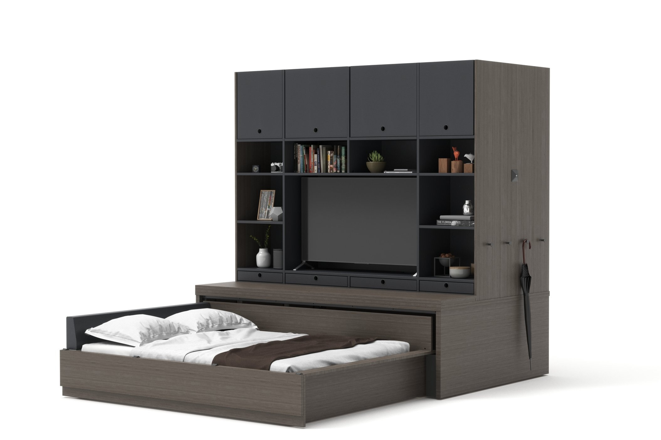 Reverse Configuration, bed opens to living room side