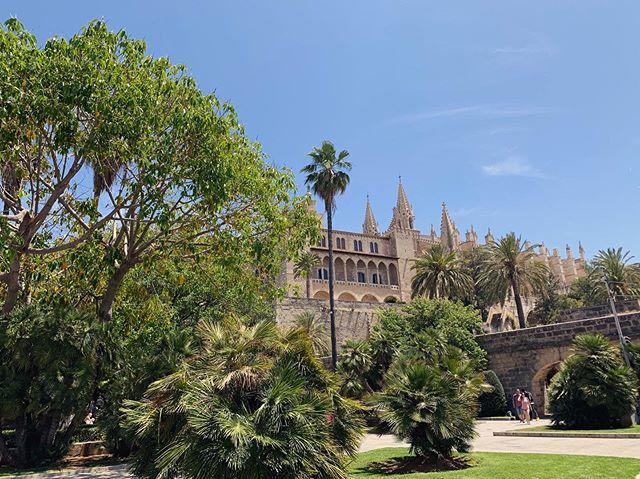 """Palma - du schöne Stadt ❤️ Mallorca, du traumhaft schöne, vielfältige Insel. Es fühlt sich jedes Mal an, wie nach Hause kommen.  Leider jedes Mal dasselbe Dilemma:  Der gemeine Deutsche macht  schon im Flieger auf sich aufmerksam mit seiner """"Mallorca ist nur einmal im Jahr""""- Bierdose, die er sich sofort in den Kopp stellt, um 2,5h später fröhlich zu klatschen. Angekommen bleibt der kulturell etwas interessiertere Tourist in Palma, walzt sich stillos durch die schönen Gassen und regt sich auf dass er nicht einfach so seinen Kaffee bestellen kann. """"Hilde, die sprechen kein Deutsch, mach du mal"""". Wäre man doch bloß gleich weiter in die Touristenbetonhölle weitergefahren, wo man Schnitzel und Bratwurst in seiner eigenen Sprache bestellen kann und man verstanden wird😔 Schade eigentlich! #mallorca #palma #spain #vacation #travel #summer"""