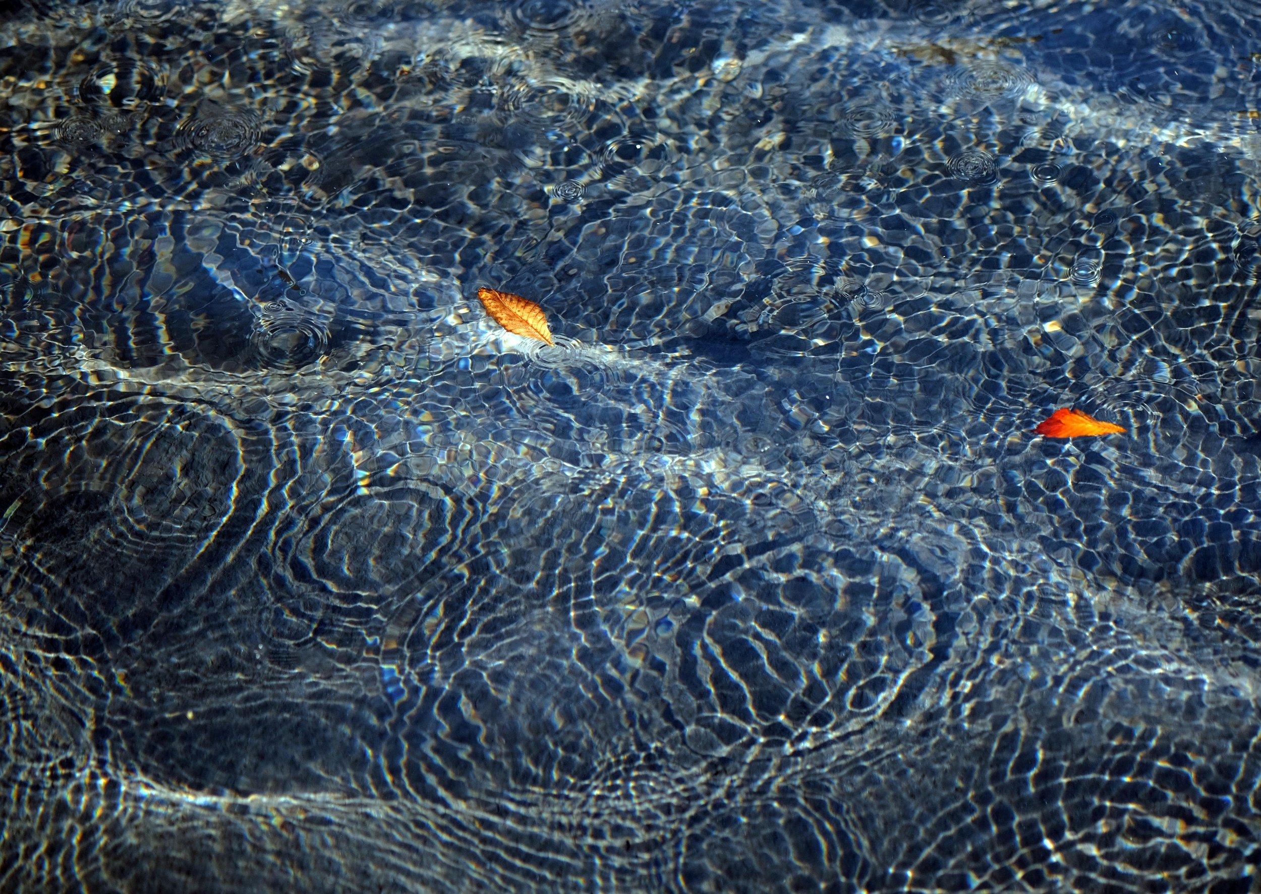 water-surface-ripple-wave-drops-984167.jpg
