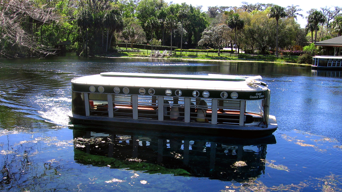 Silver Springs' world famous glass bottom boats.