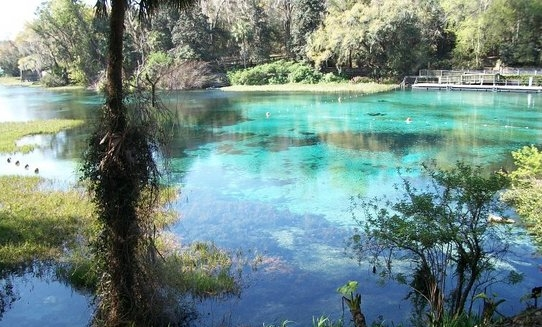 Amazing views from Rainbow Springs State Park.