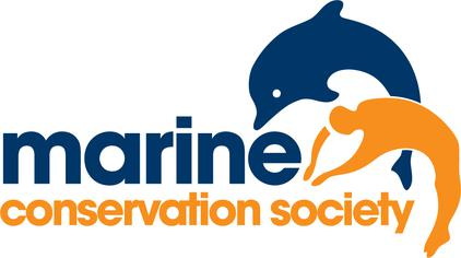 Marine Conservation Society Beach Clean Up