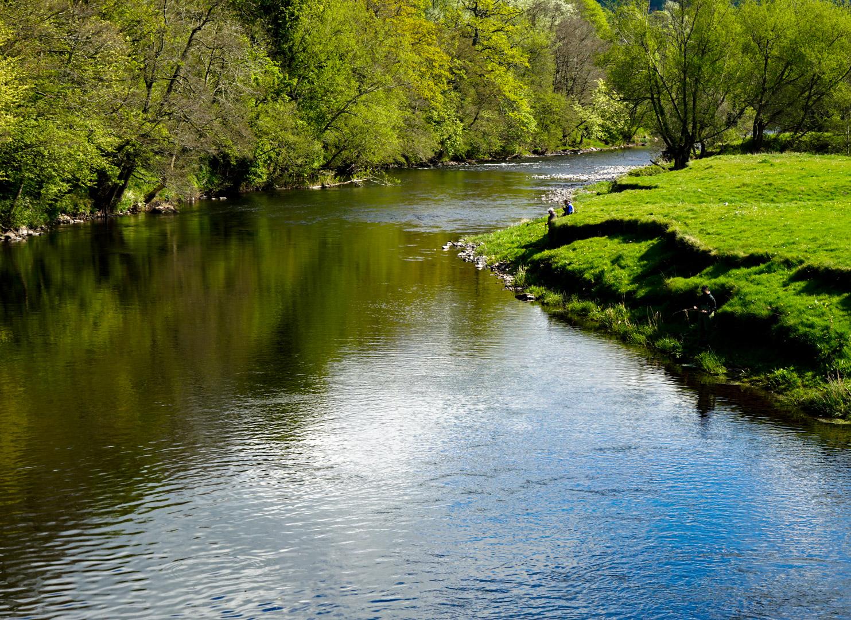 river-bank1.jpg