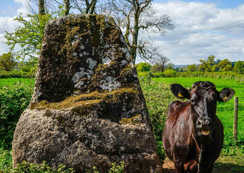 Gilestone-Farm-holiday-home-in-Talybont-on-Usk-near-Brecon-Wales.jpg