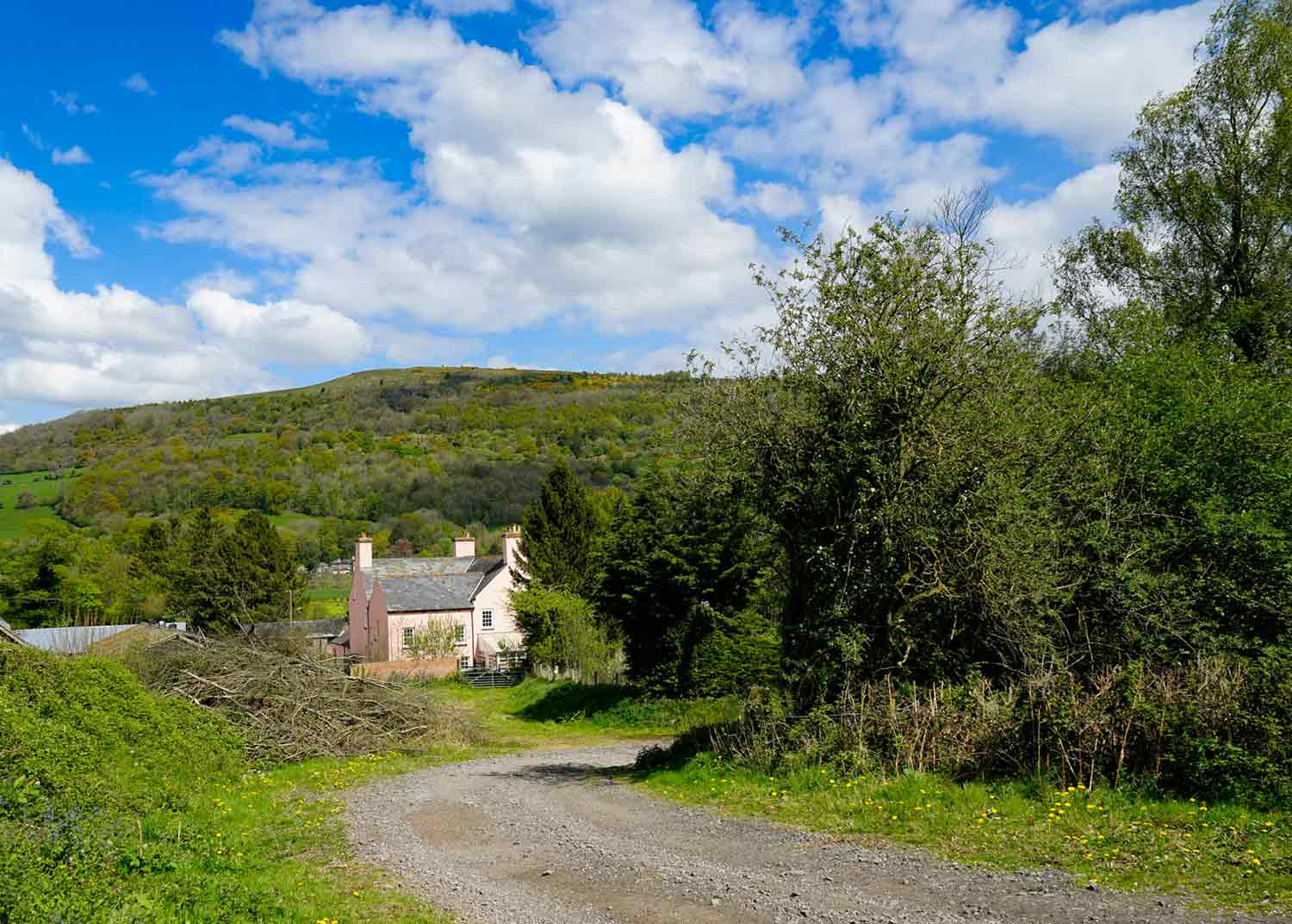 Dog-friendly-holiday-accommodation-in-the-Welsh-Brecon-Beacons.jpg
