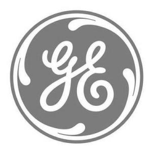 GE social logo.png