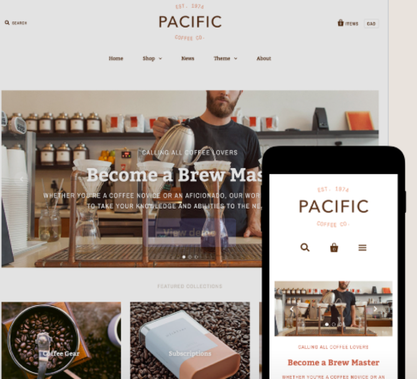 Best shopify themes for seo. list by vailnetworks.com