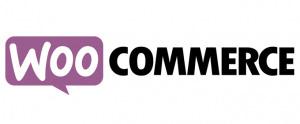 WooCommerce best ecommerce platform