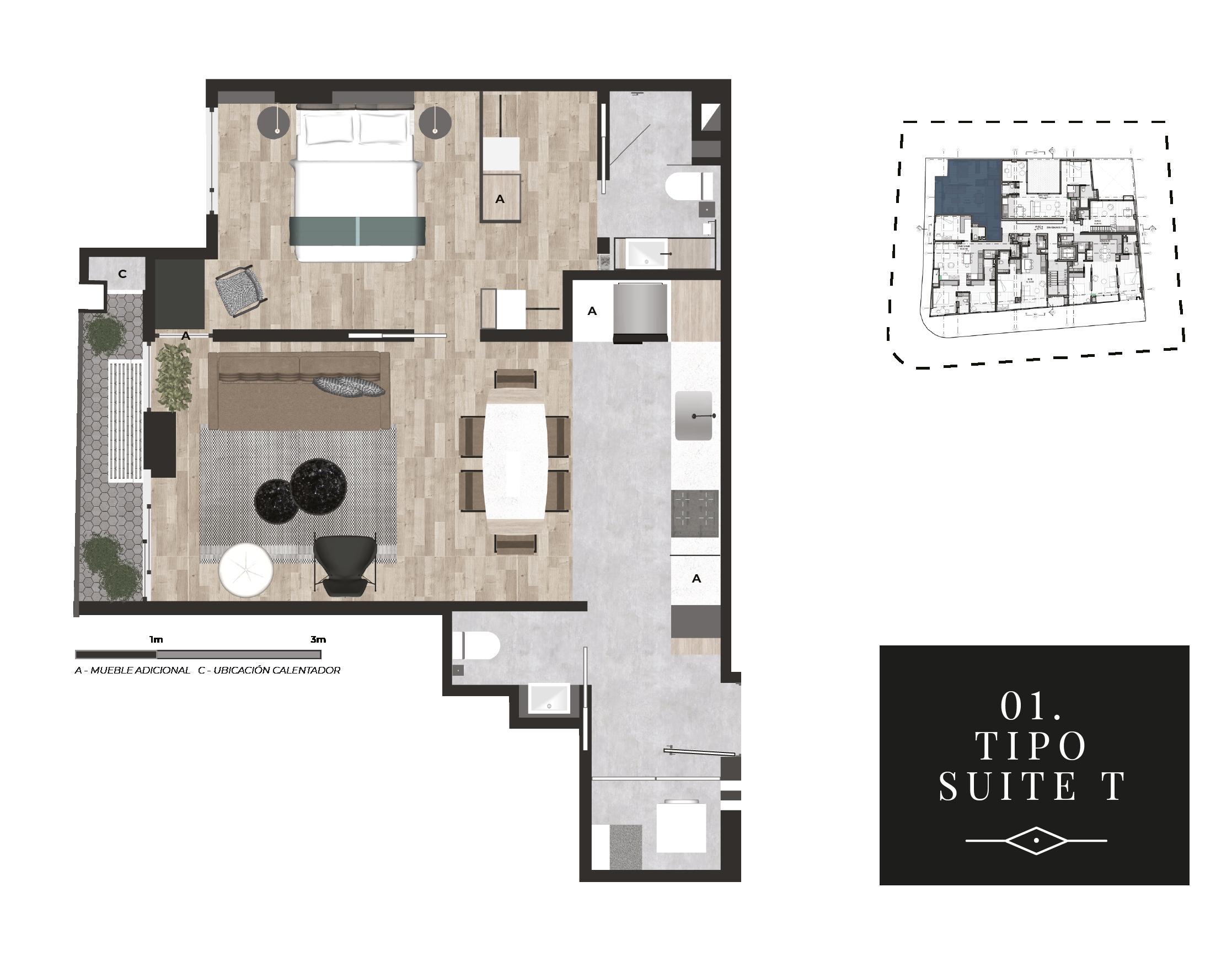 01 Suite T.png