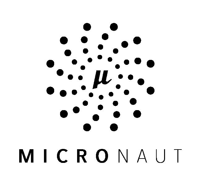 Micronaut_StackLogo_Black@2x.png