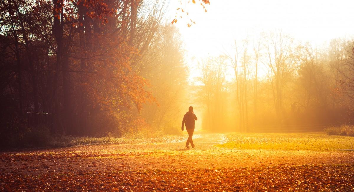 man raking leaves.jpg