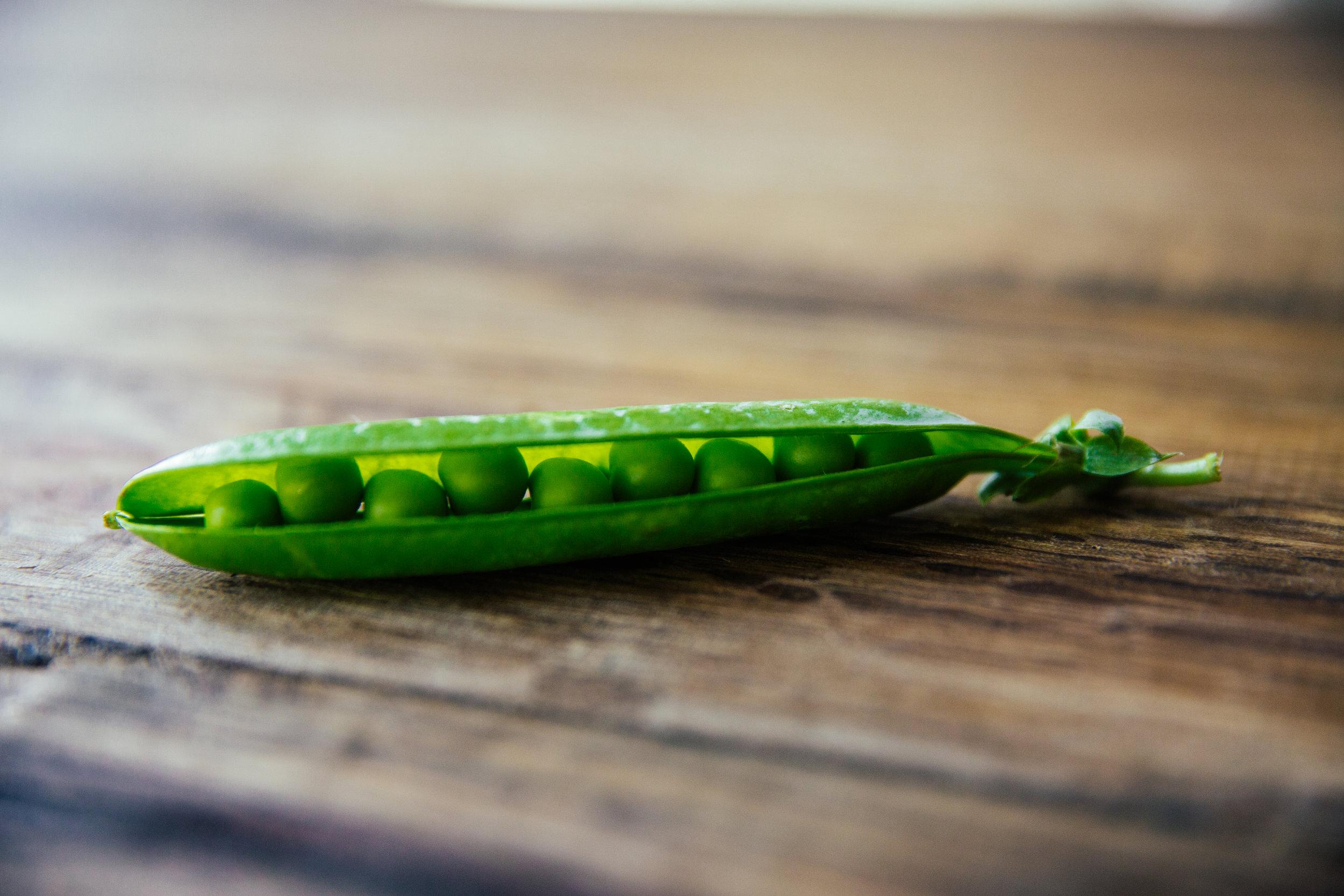 Första året:Ärtor, bönor, gröngödsling - Första året odlas baljväxter som tillför jorden näring med hjälp av kvävefixerande rötter. Ingen extra näring tillsätts.