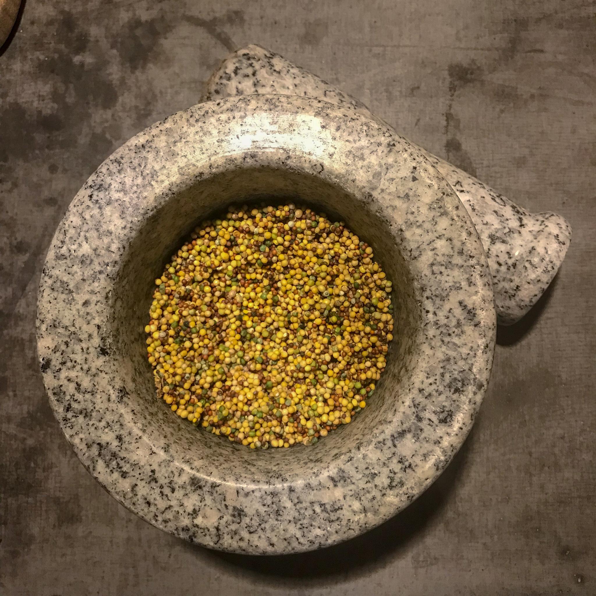 Nyskördade senapsfrön