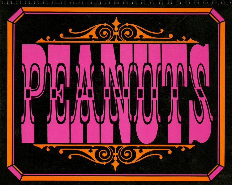 PEANUTS DATE BOOKS