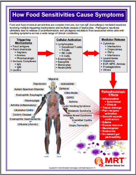 MRT-how food sensitivities cause symptoms-Resized .png