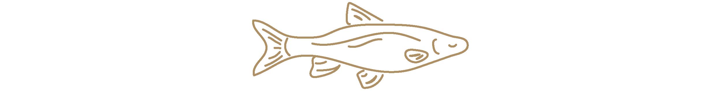 Bar Pesce - Fish Footer-11.png