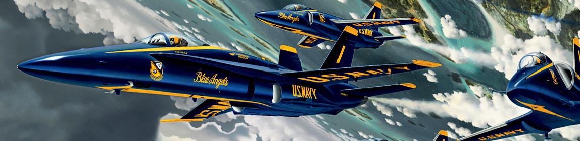 1. BLUE ANGELS - View  1 crop.jpg