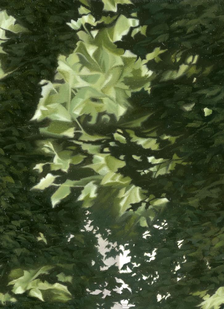 The Museum - Leaves - 1000.jpg