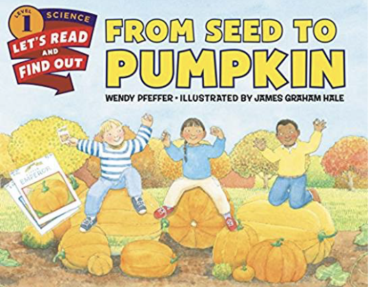 from seed to pumpkin printables
