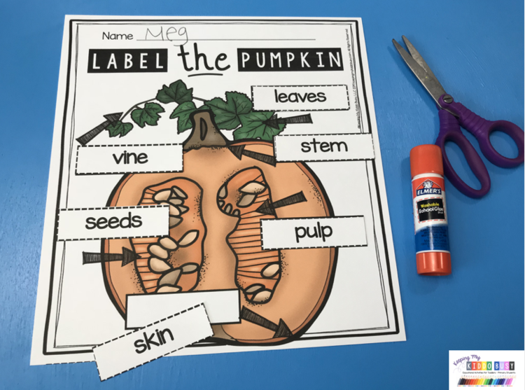 label the pumpkin labeling parts of pumpkins