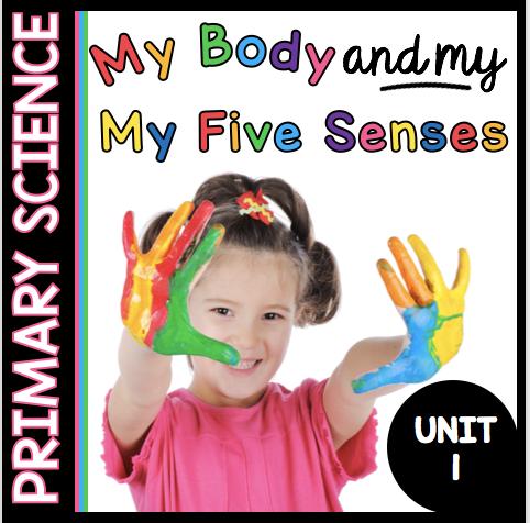 kindergarten science my five senses my body