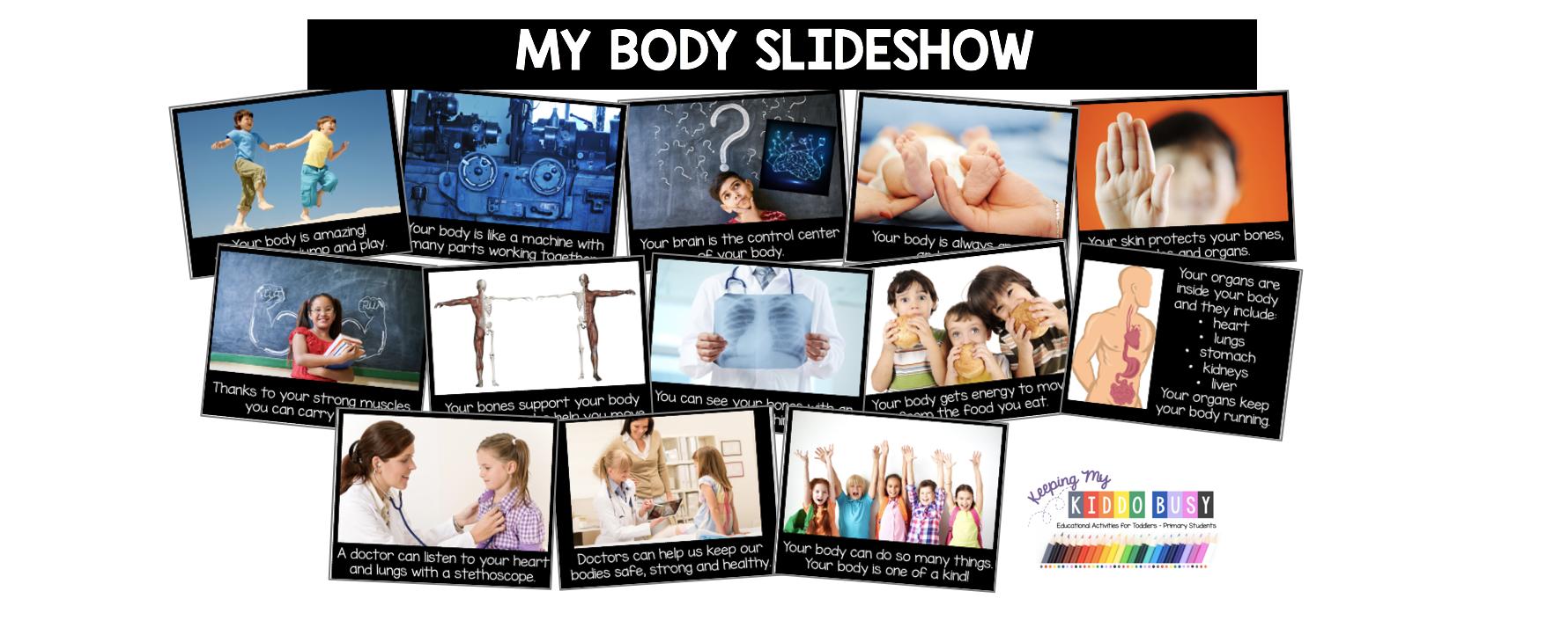 the human body slideshow