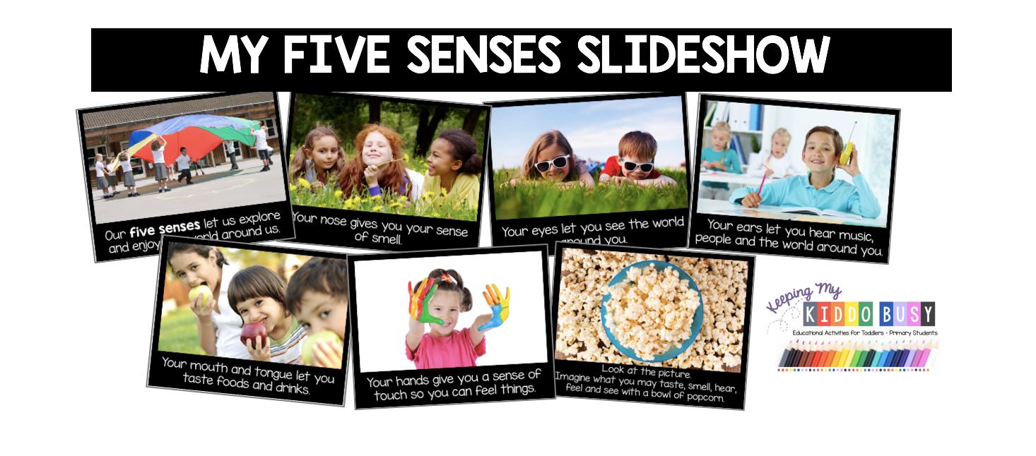 five senses slide show