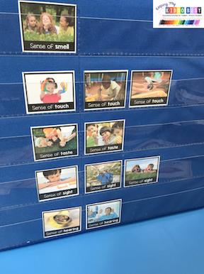 five senses pocket chart cards printable