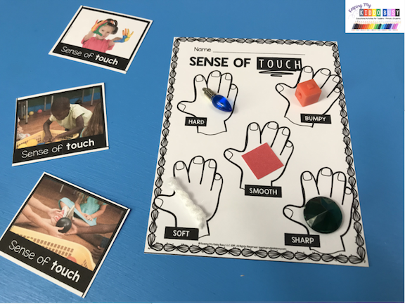 sense of touch printable worksheet and activity